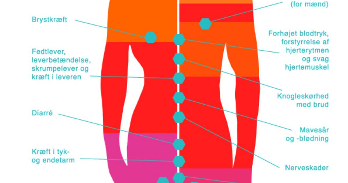 hvad gør vand ved kroppen
